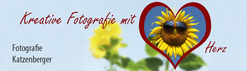 Banner_Grundbild_Sonnenblume_farbig_weich.jpg